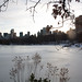 Un lac en hiver