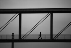 Steps (the bbp) Tags: bridge bw man berlin silhouette architecture deutschland walk steps bn ponte uomo architettura germania passi cammino thebbp artinbw