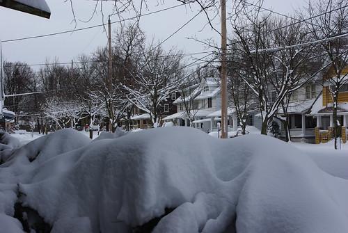 February 2010 011