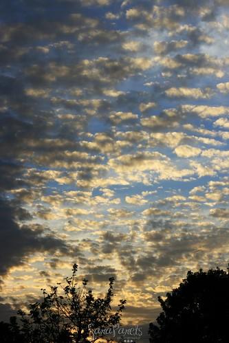 Beautiful Miami sky