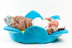 Dominic (Sergiu Bacioiu) Tags: bear blue sleeping baby white flower green beautiful hat little sweet sleep small young newborn isolated dominic alexandru