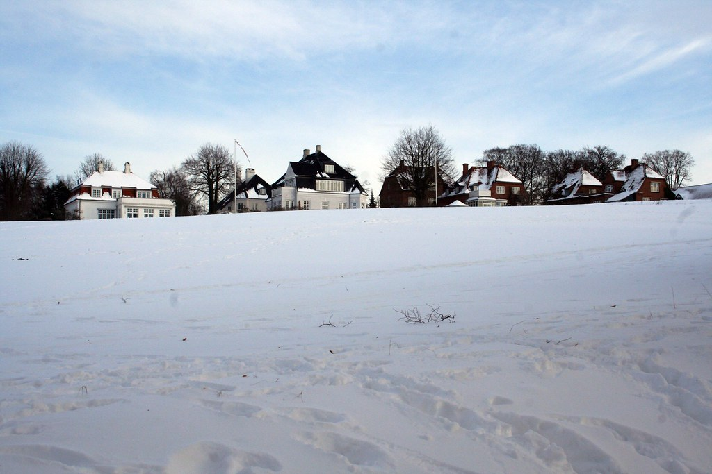 Houses in Roskilde
