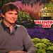 Ashton Kutcher Talks About Valentine's Day