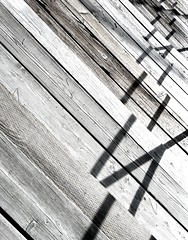 P1010166 (Randolph Knackstedt) Tags: wood blackandwhite white abstract black texture lines blackwhite shadows panasonic picnik tz7 zs3 panasoniczs3