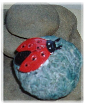 A ladybird!