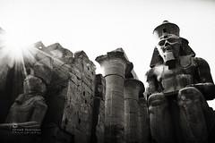 Till Kingdom Come... (SonOfJordan) Tags: old sky bw sun history statue stone canon temple eos ancient egypt kingdom pharaoh huge column burst gigantic karnak aswan xsi 450d samawi sonofjordan wwwshadisamawicom