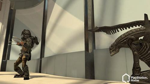 Home Aliens Vs Predator