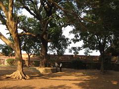 Secret Discussion (tpms5) Tags: india kerala malabar openeyes kannur cannanore malabarmagazine charmingcountries