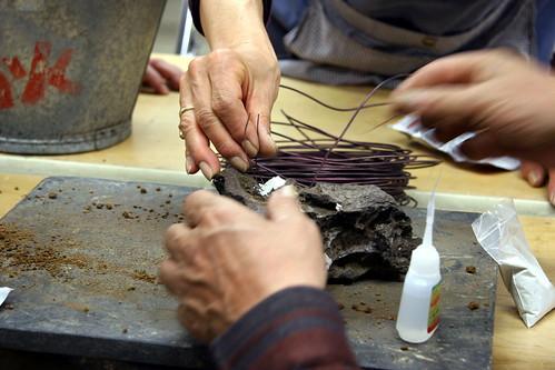 Bonsai (石付き) - fijando hierros I