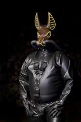 Jackal 12 (rebreatherstudent) Tags: rubber gasmask drysuit aquala smashwolf wildgasmasks