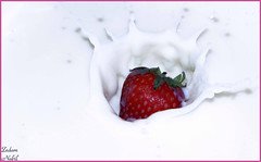Strawberry Fun (zedamnabil) Tags: red food white closeup fruit lumix algeria milk strawberry soft action flash group panasonic lait 100 splash algerie regal comment fraise highspeed algerian grosplan highspeedphotography surlevif delice algerien mywinners colorphotoaward 100commentgroup fz28