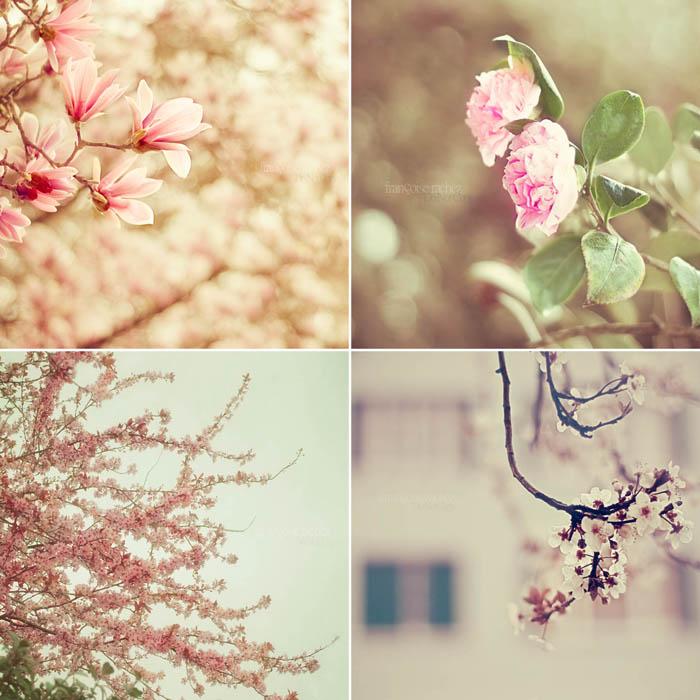 My Vintage Spring