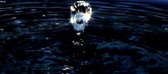 THE Shining Drop (Vi. Ko. (Vikas K.)) Tags: india water shine experiment saturday drop maharashtra shining pune