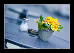 Blur of Color (I) (le_huf) Tags: city flower green yellow table bucket dof sony tritone shallowdepthoffield kempten picswithframes alphadslra700 samyang85mmf14