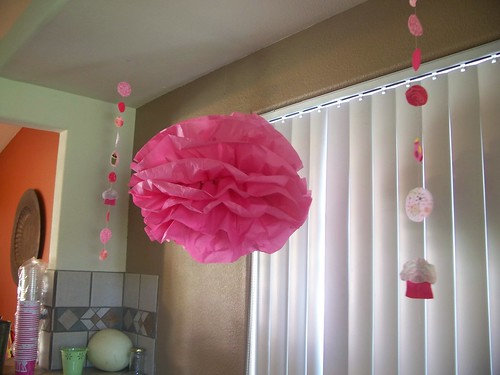 Pinkalicious Birthday Decorations