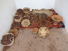 Argan (Helen M F) Tags: atlasmountains morocco marrakech ourikavalley