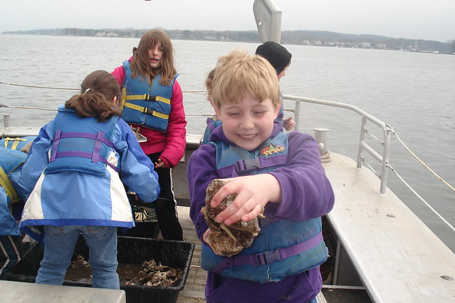Third Grade Oyster Release