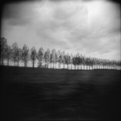 Holga 40  R4F1 - Eurostar Landscape 10 (Adam Clutterbuck) Tags: trees blackandwhite bw france 6x6 film window train french landscape mono blackwhite holga eurostar super xp2 400 medium format bandw treeline ilford greengage adamclutterbuck showinrecentset
