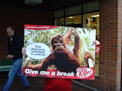Great malvern says Stop Kitkat destroying the home of the Orang-utan (softies) Tags: kat kit malvern nestle greatmalvern worcs greenpeaceuk