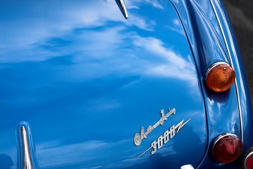Austin Healey 3000 - logo et clignotant
