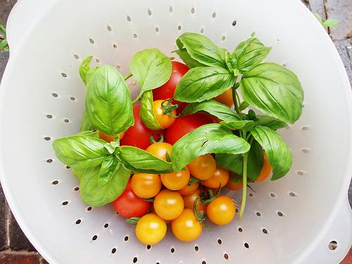 tomatoandbasil