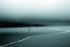 moody Monday (Andy Kennelly) Tags: trees mist beach wet water silhouette fog oregon coast sand waves mood pacific northwest walk wave shore question cannon monday curve questions figures duatone
