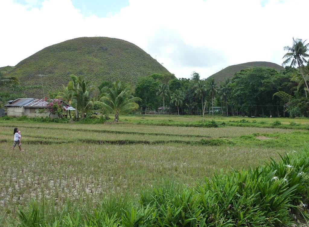 Bohol-Talibon-Chocolate Hills (33)