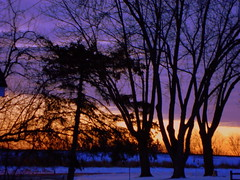 Sun Setting Over The Railroad Tracks (dccradio) Tags: trees sunset snow wi marshfield wisconsinwinter