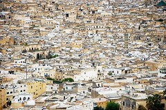 Through the Medina (Ana Santos) Tags: old town desert islam mosque explore morocco arab fez medina fes muslin anasantos