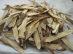 Astragalus membranaceus--黃耆/北耆