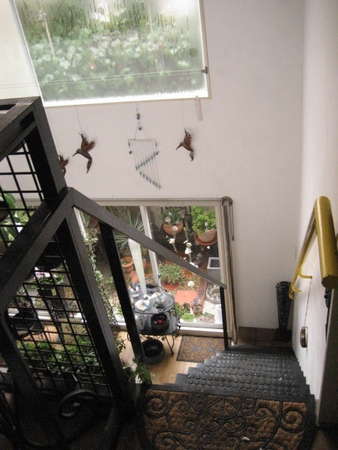 井口の花屋 シャノアール 7