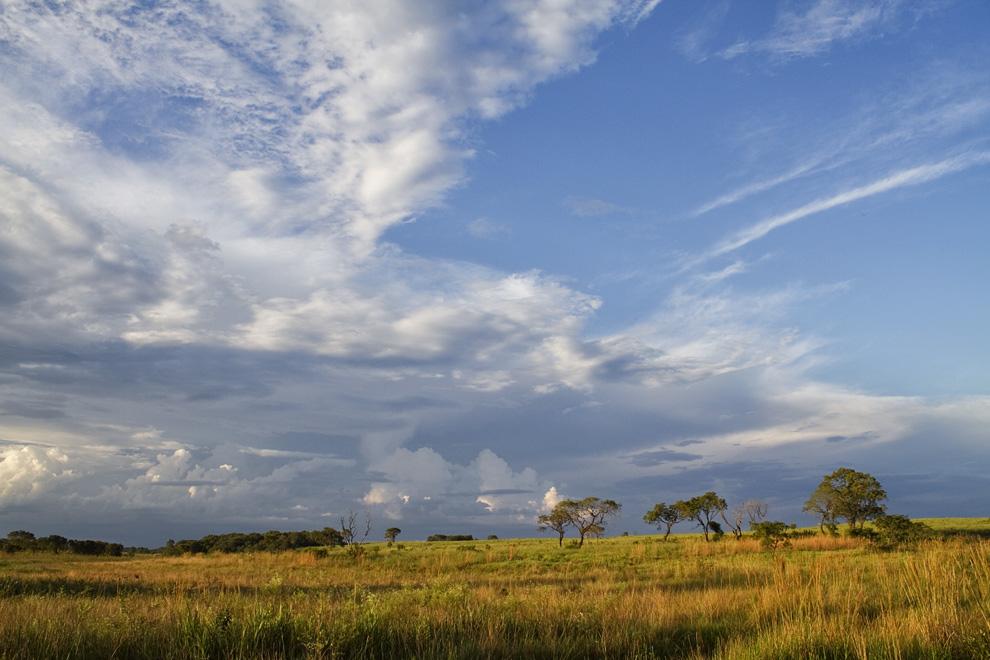 El Sol se posa una vez más en los campos cerca de las dunas, en una estancia. (Rio Verde, San Pedro, Paraguay - Tetsu Espósito)