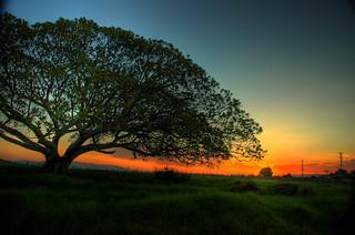 Flinders Sunset-1