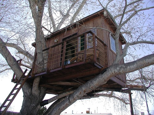 Building a Tree House Designs