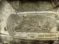 Critter Mechanics (MudMapImages) Tags: cat kitten diesel critter thelittledoglaughed