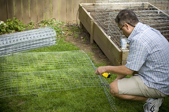 building cages for raised beds