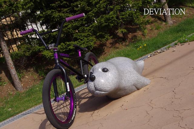 Bike & Azarasi