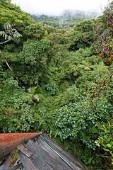 baudchon-baluchon-costa-rica-santa-elena-24