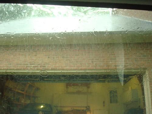 260/365 Rain Rain