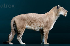 Panthera atrox by Sergiodlarosa