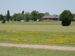 Blackmer Golf Course clubhouse (funny strange or funny ha ha) Tags: flowers blue school green oklahoma reunion yellow golf town memorial day all weekend small course fabulous ok hooker clubhouse panhandle 2010 blackmer