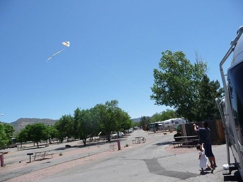 flying a kite at koa.