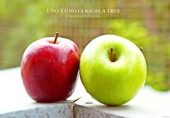115_TRES (JESSENIA VÉLEZ BONILLAPHOTOGRAPHY) Tags: verde apple casa ecuador manta mosca terraza roja manzanas lavandería sudamérica manabí jesseniavélezbonilla