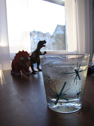 dinos and prosecco