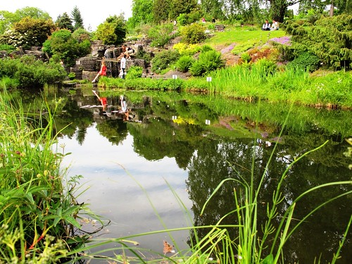 Oslo Botanical Garden in Norway #1