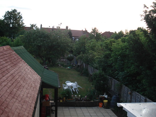 garden morning