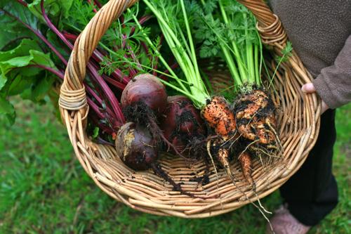 de-formed carrots