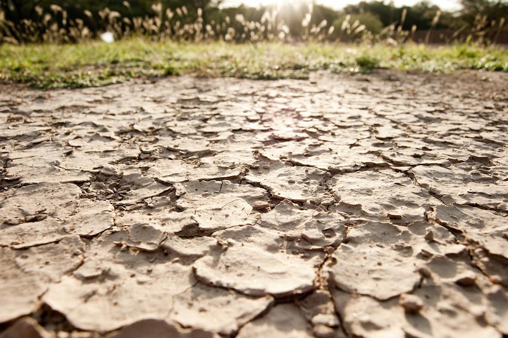En nuestra expedición por el chaco recogimos imágenes interesantes, como estas grietas en el suelo producido por la sequía en la zona de Boquerón, terreno característico del Chaco Paraguayo (Elton Núñez - Boquerón, Paraguay)
