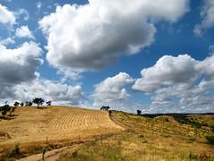 ALENTEJO  LANDSCAPE (MURDERINTOYTOWN) Tags: trees field silhouette landscape view hill farming straw slope arable portugalclouds alentejoone