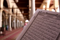 Holy Quran (Tamer El Mahrouky) Tags: canon words dof egypt mosque bin holy cairo quran amr elass